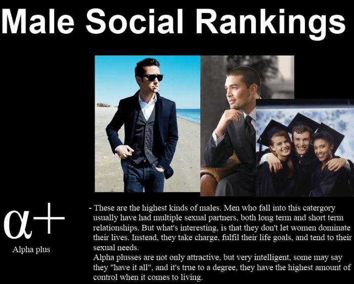 Male Social Rankings (5 pics)
