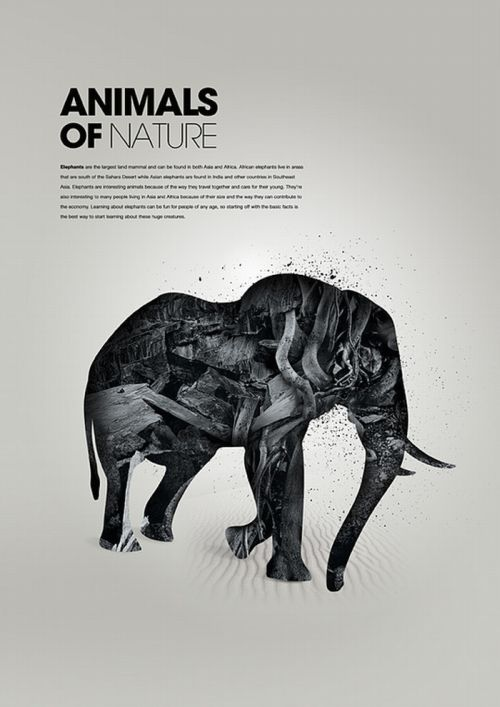 Awesome Animal Artworks (26 pics)