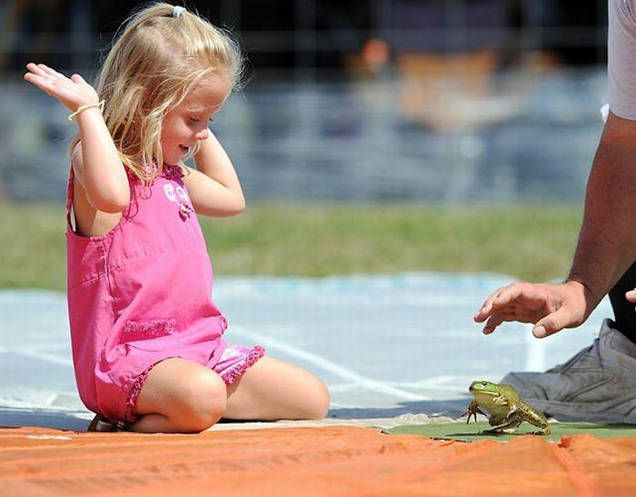Frog Jump Festival 2010 in Ohio (15 pics)