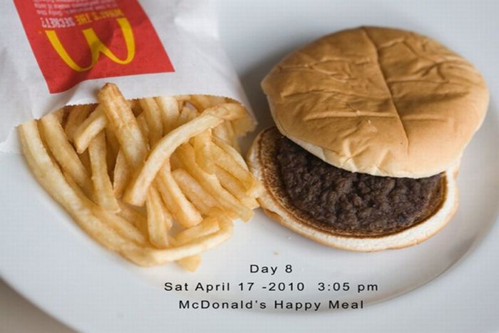Happy Meal Project (15 pics)