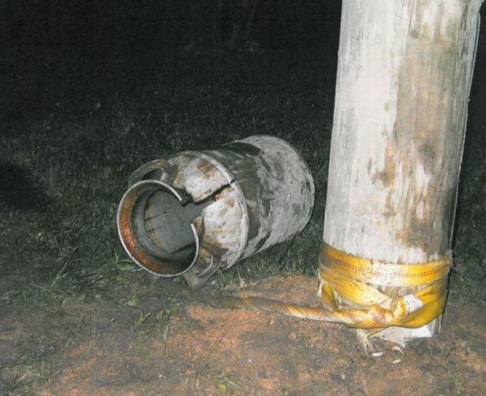 Bear Stuck in a Milk Barrel (10 pics)