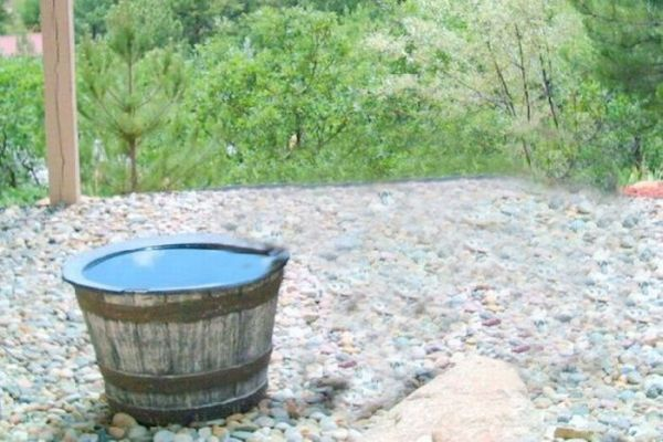Why the Water Barrel Is Empty (3 pics)