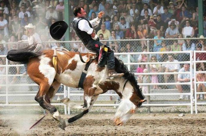Amazing Action Photography (16 pics)