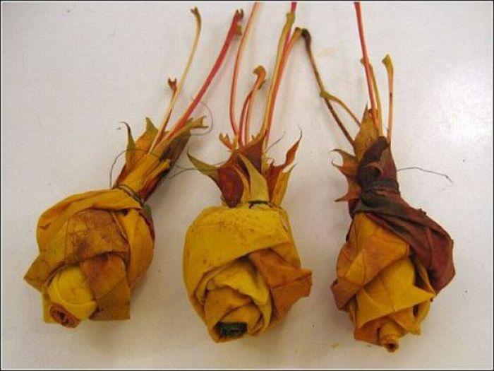 Handmade Bouquet (15 pics)