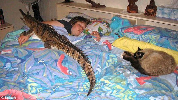 Dangerous Pet (8 pics)