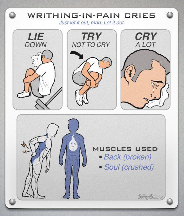 Realistic Gym Workout Diagrams (7 pics)