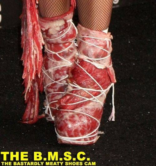 Lady Gaga and Her Dress of Meat (10 pics)
