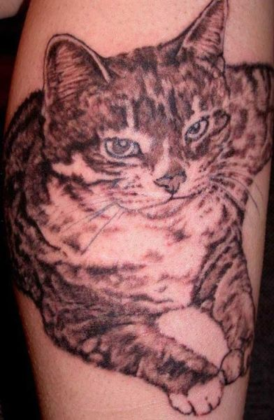 Cat Tattoos (18 pics)