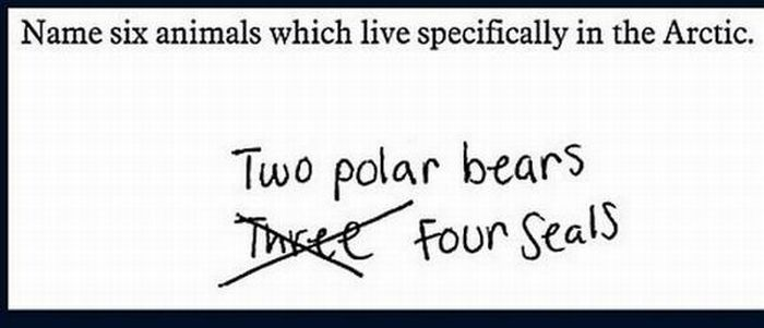 funny exam answers. Funny Exam Answers (23 pics)