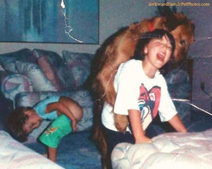 Funny Family Photos With Pets (27 pics)