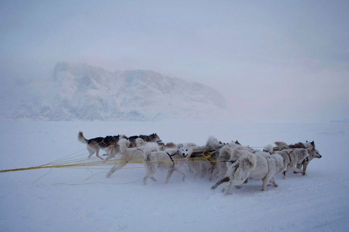 The Everyday Life in Greenland (18 pics)
