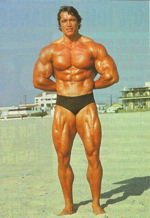 Arnold Schwarzenegger Jung