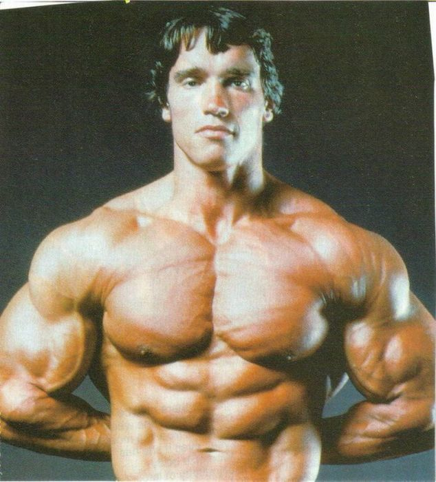 Everything, and arnold schwarzenegger young agree, the