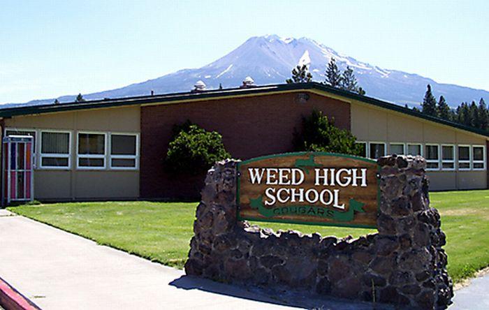 Bad School Names (19 pics)