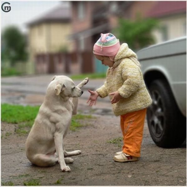 A Child and a Dog Friendly Greetings (4 pics)