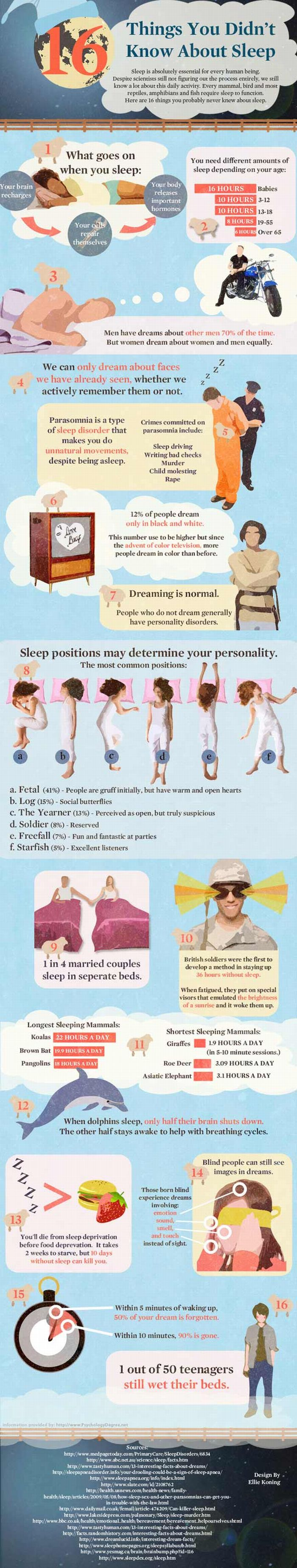 Things You Didn't Know About Sleep (infographic)