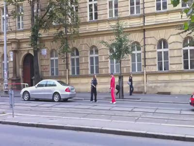 Sword Fight on the Streets of Prague