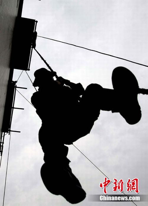 Special Forces (Silhouettes) (15 pics)