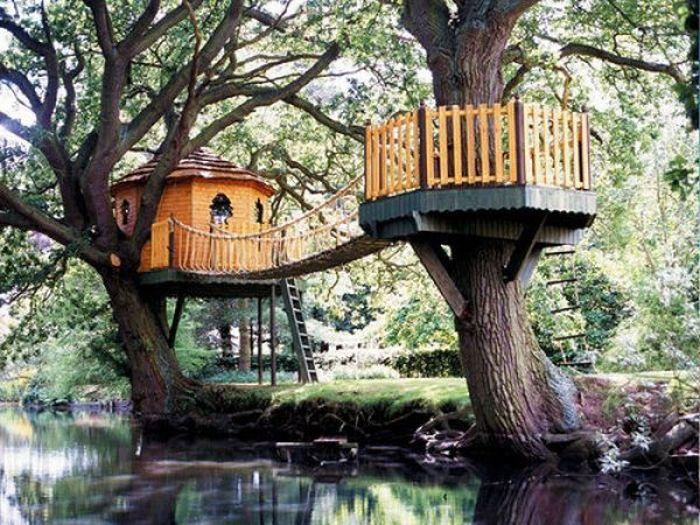 Queres construir tu casa del arbol?saca tu idea de aca ...