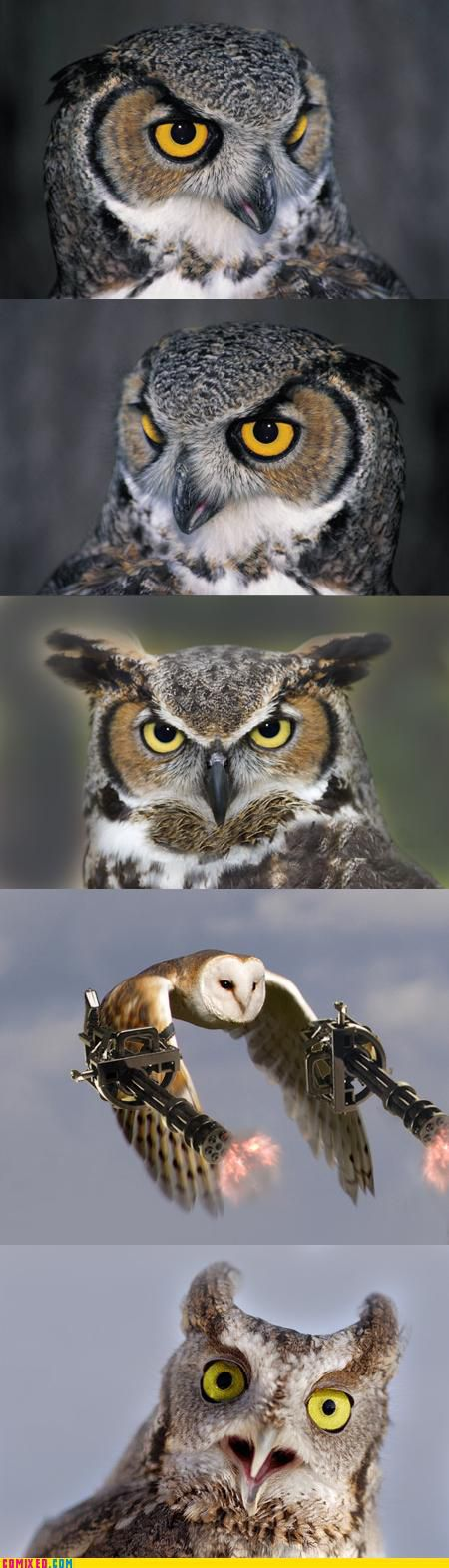 Funny Commixed Pictures. Part 6 (36 pics)