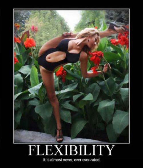 Sexy Demotivational Posters (18 pics)