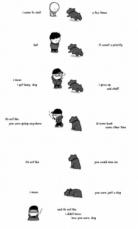 Dog (13 pics)