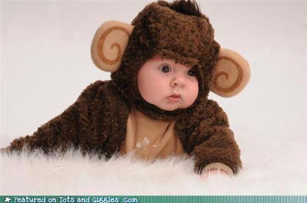Cute Babies (53 pics)