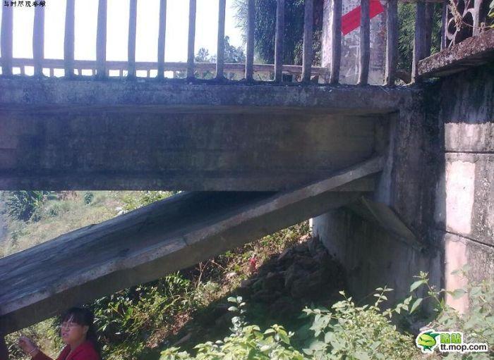 Interesting Way of Bridge Building (7 pics)