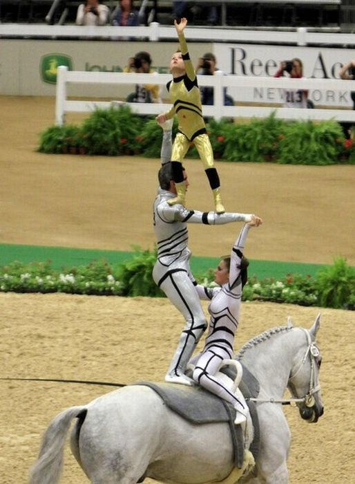 World Equestrian Games 2010 (10 pics)