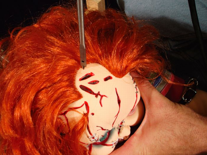 Great Ideas for Halloween (55 pics)