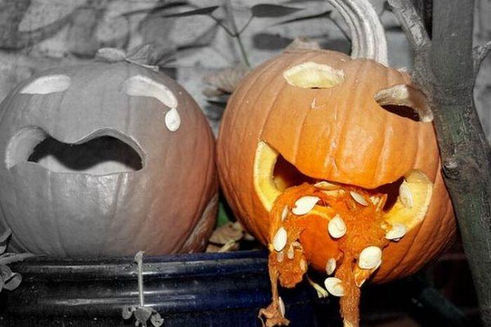 Puking Pumpkins (54 pics)