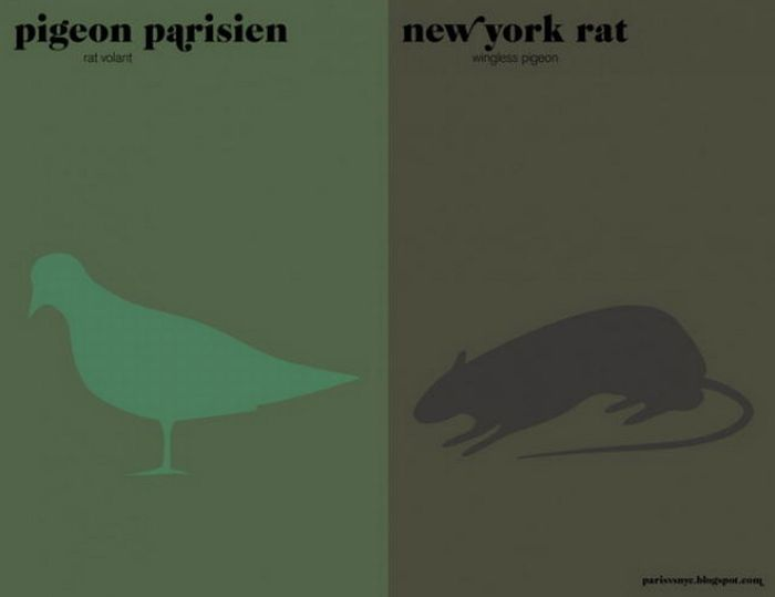 Paris vs New York (16 pics)