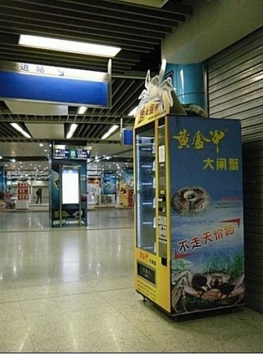 Crab Vending Machines in China (9 pics)