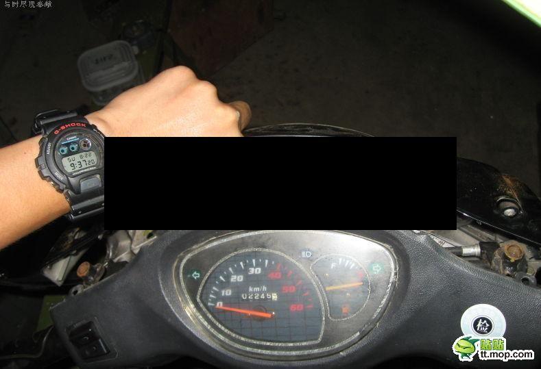 Surprise Inside a Motorbike (7 pics)
