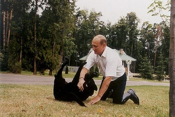 Vladimir Putin With Animals (24 pics)