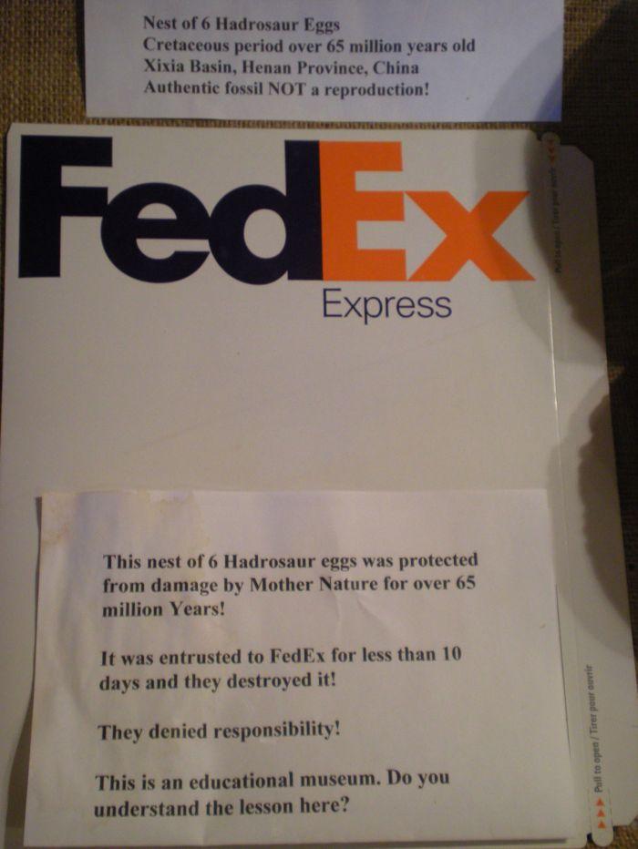 Never Ship Dinosaur Eggs with FedEx (2 pics)