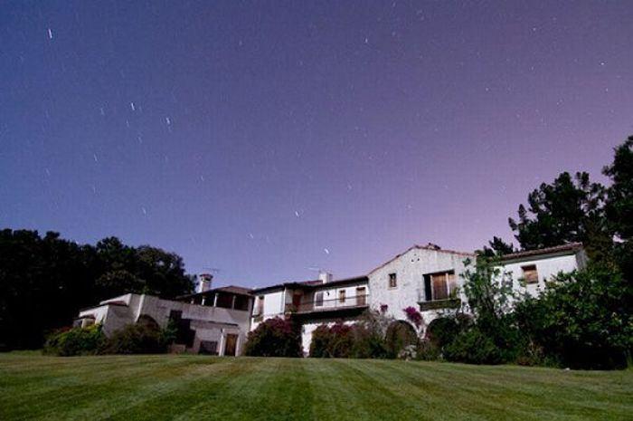 Steve Jobs' Households (90 pics)