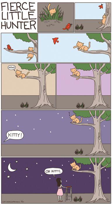 Cat versus Human (36 pics)