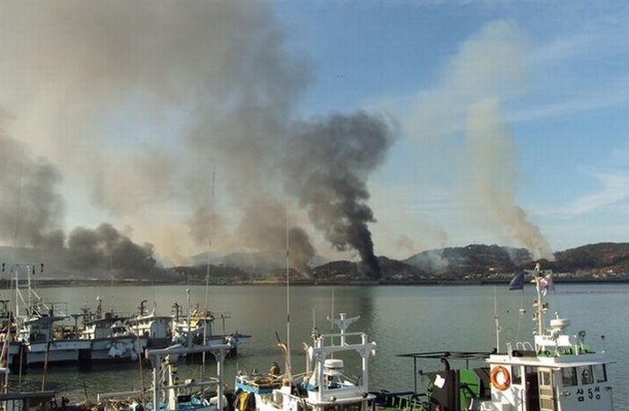 Aftermath of Nort Korea's Missle Strike on Yeonpyeong Island (20 pics)