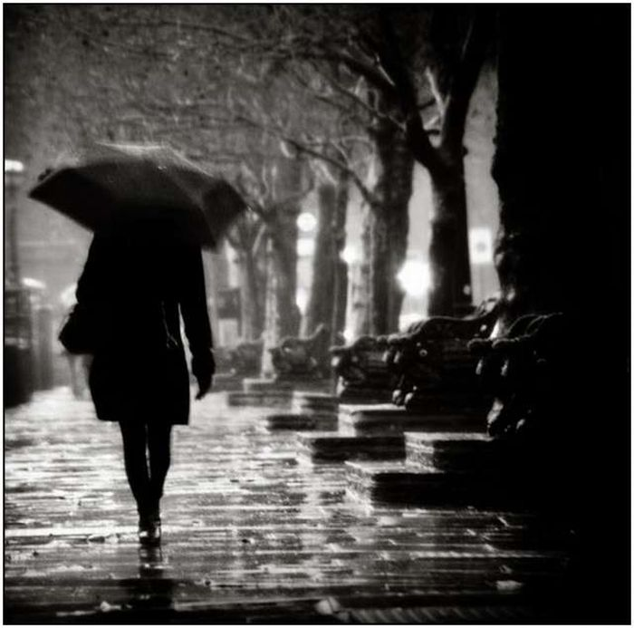 Beautiful Rain Photos (28 pics)