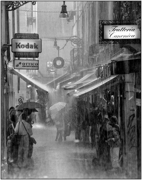Beautiful Rain Photos (28 pics)