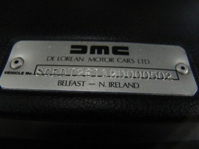 DeLorean Nike Dunk (11 pics)