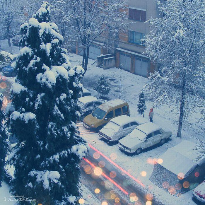 Beautiful Winter Photos (31 pics)
