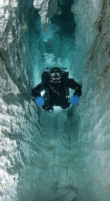 Beautiful Underwater Cages (23 pics)