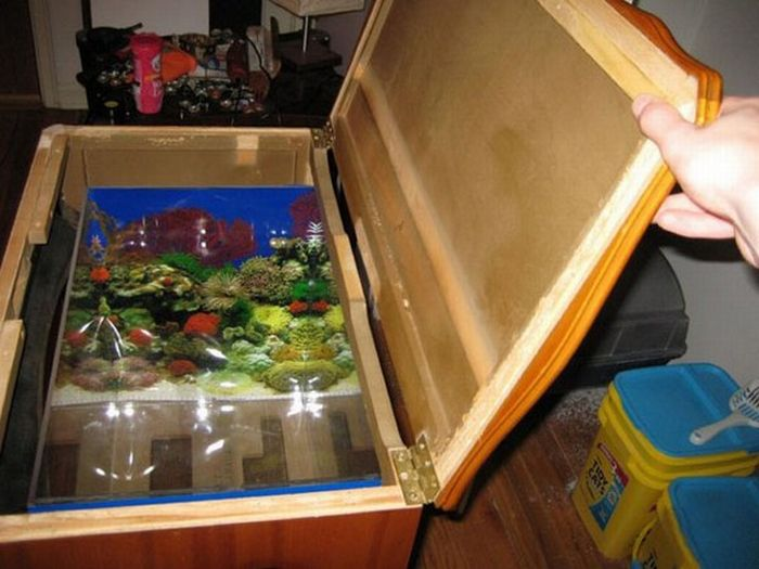 A Fish Tank Made Out of Old TV (18 pics)
