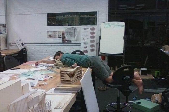 Sleeping at Work (17 pics)