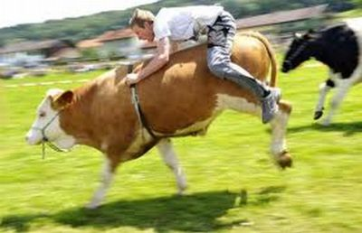 People Riding Inappropriate Animals (22 pics)