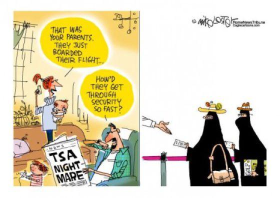 Funny TSA Comics (29 pics)