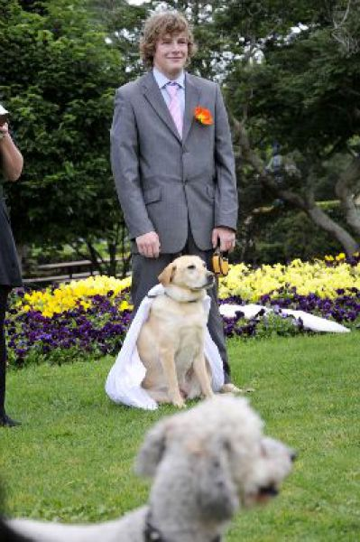 Man Married His Dog (17 pics)
