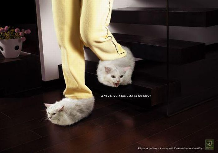 Animal Protection Ads (100 pics)